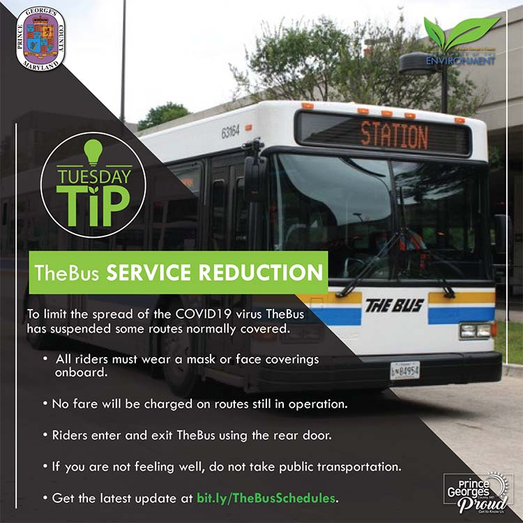 The Bus Service Reduction