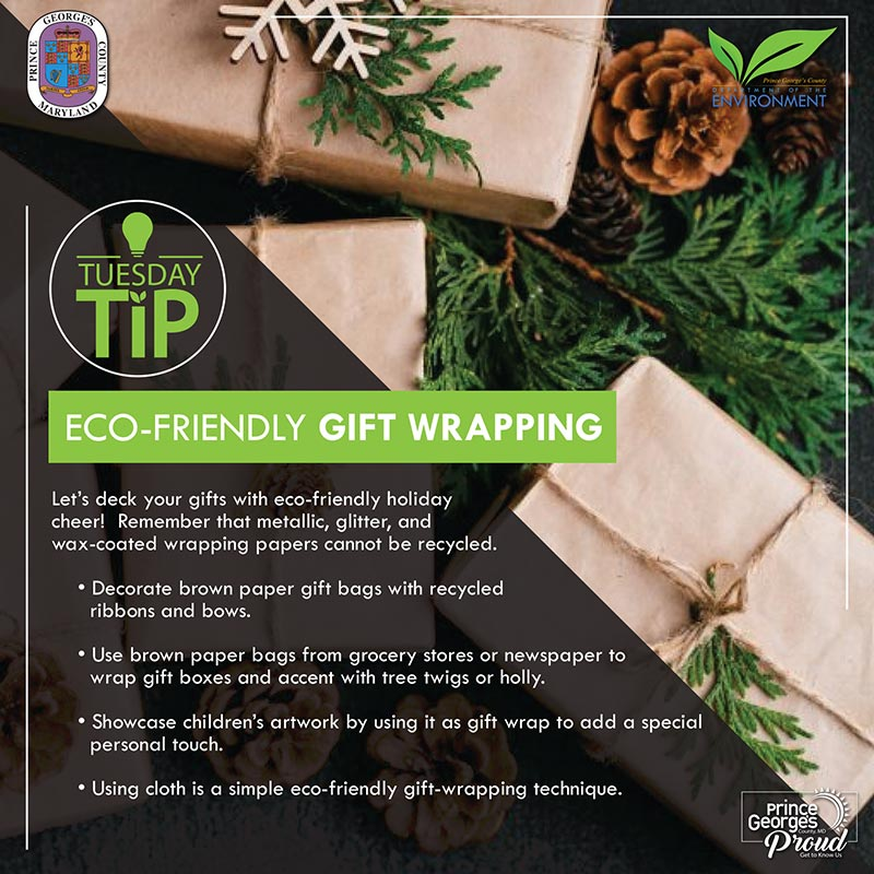 Eco-friendly Gift Wrapping