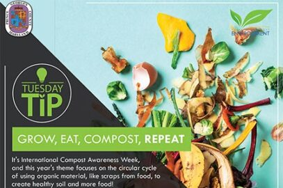 Grow, Eat, Compost, Repeat